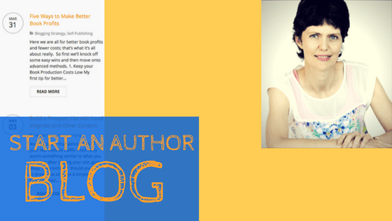 niche author blog